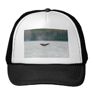Alaska Whale Tail Trucker Hat