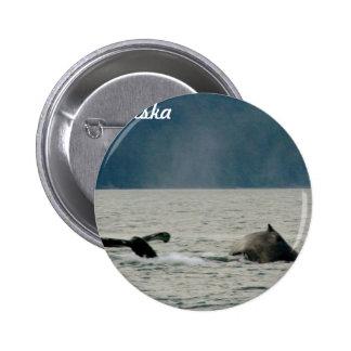 Alaska Whales Button
