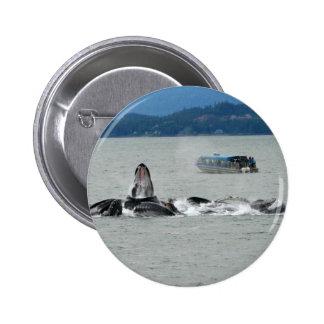 Alaska Whales Buttons