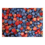 Alaska Wild Berries Fruits Business Cards