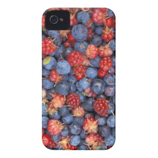 Alaska Wild Berries Fruits Case-Mate iPhone 4 Cases