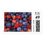 Alaska Wild Berries Postage