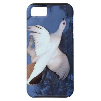 Alaska Willow Ptarmigan iPhone SE/5/5s Case