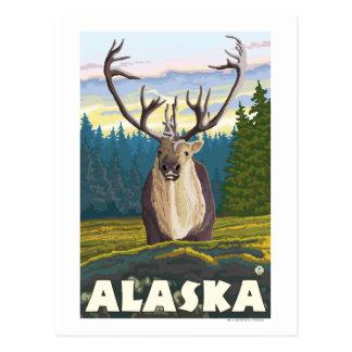AlaskaCaribou en el viaje salvaje del vintage Tarjeta Postal