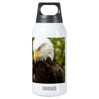Alaskan Bald Eagle Insulated Water Bottle