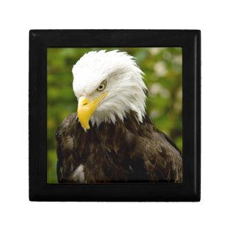 Alaskan Bald Eagle Jewelry Box