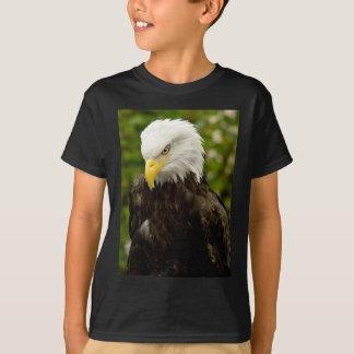 Alaskan Bald Eagle T-Shirt