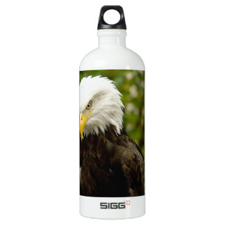 Alaskan Bald Eagle Water Bottle