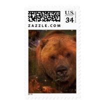 Alaskan Bear with Cubs Postage