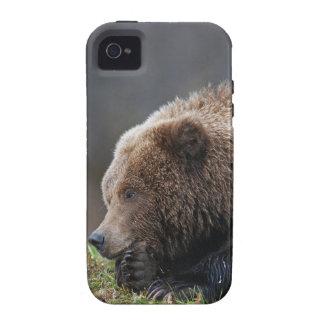 Alaskan Brown Bear at Kenai NWR Case-Mate iPhone 4 Case
