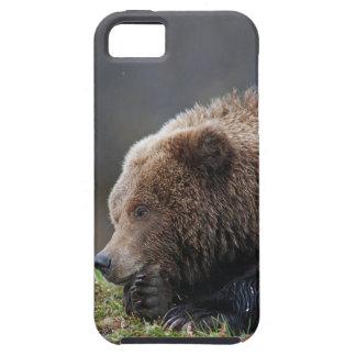 Alaskan Brown Bear at Kenai NWR iPhone SE/5/5s Case