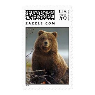 Alaskan Brown Bear at Kenai NWR Postage