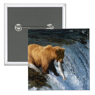 Alaskan Brown Bear Catching Salmon at Brooks 2 Inch Square Button