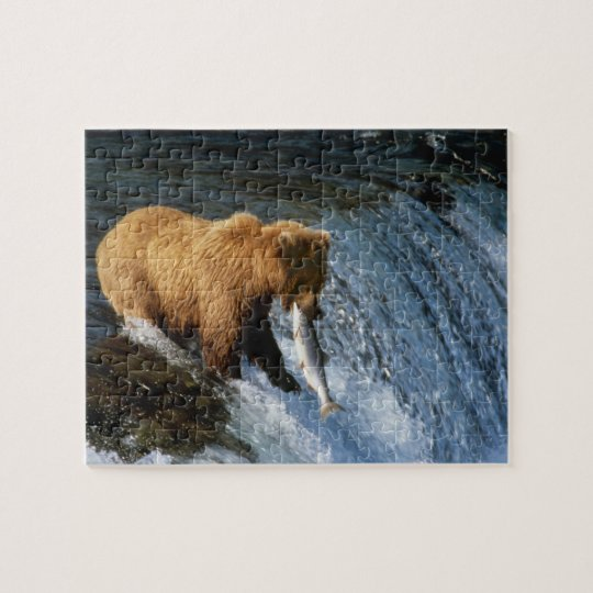 Alaskan Brown Bear Catching Salmon at Brooks Jigsaw Puzzle