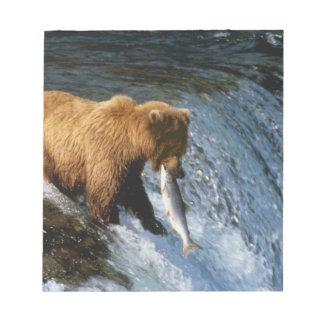 Alaskan Brown Bear Catching Salmon at Brooks Note Pad
