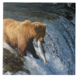 "Alaskan Brown Bear Catching Salmon at Brooks Tile<br><div class=""desc"">COPYRIGHT Bill Bachmann / DanitaDelimont.com 