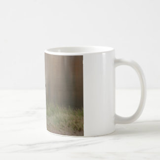 Alaskan Brown Bear Coffee Mug