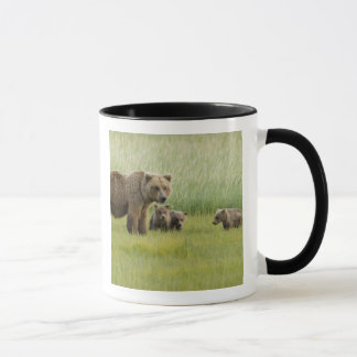Alaskan Brown Bear Sow and three Cubs, Ursus Mug