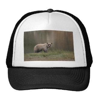 Alaskan Brown Bear Trucker Hat