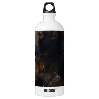 Alaskan Brown Bear with quote collection Aluminum Water Bottle