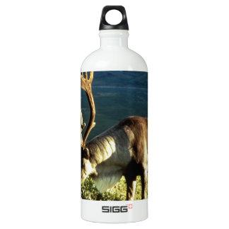 Alaskan Caribou Water Bottle