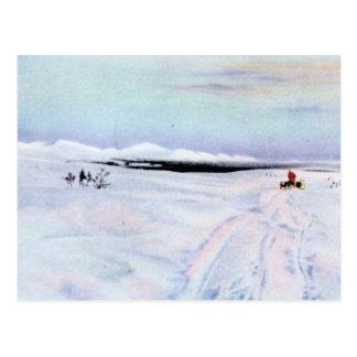 Alaskan Dog Sleddiing in the Yukon-Koyukuk Postcard