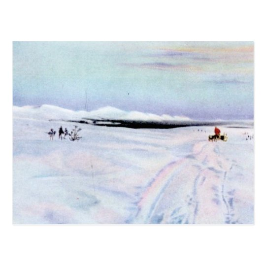 Alaskan Dog Sleddiing in the Yukon-Koyukuk Postcard
