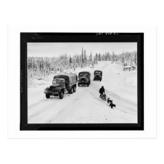 Alaskan Dogsled & Army Trucks Postcard