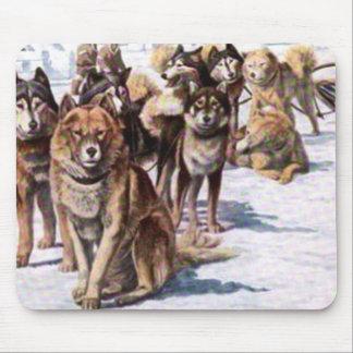 Alaskan Eskimo Dogs Mouse Pad
