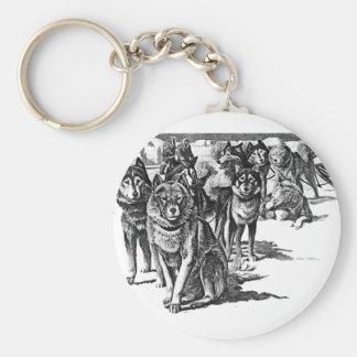 Alaskan Eskimo sled dog Basic Round Button Keychain