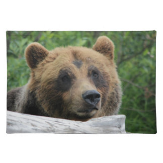 Alaskan Grizzly Bear, The Kodiak Placemat