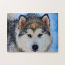 Alaskan Huskey Dog. Jigsaw Puzzle