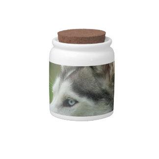 Alaskan Husky Candy Jar