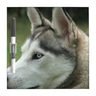 Alaskan Husky Dry Erase Board