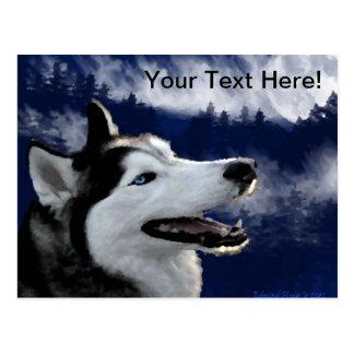 Alaskan Huskys Postcard