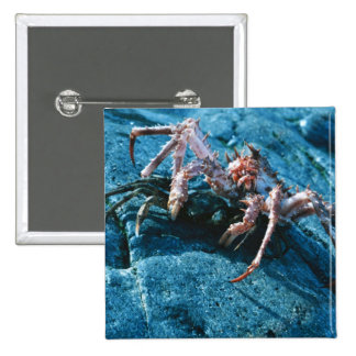 Alaskan King Crab Pins