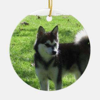 Alaskan Klee Kai Dog Ceramic Ornament