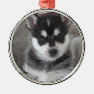 Alaskan Klee Kai Puppy Dog Metal Ornament