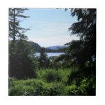 Alaskan Landscape Outdoors Nature Photography Ceramic Tile