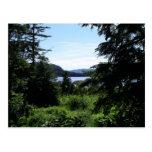Alaskan Landscape Postcard