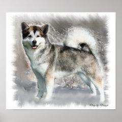 Alaskan Malamute Art Print Gifts print