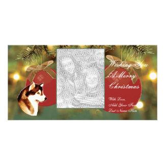 Alaskan Malamute Christmas Photocard Card