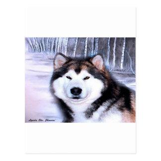 Alaskan Malamute Design by Artist SteJhourre Postcard