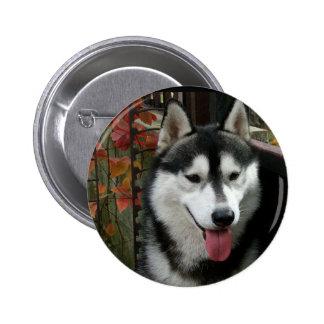 Alaskan Malamute Dog 3 Pinback Button