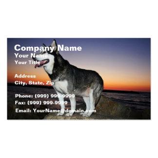 Alaskan Malamute Dog at Sunset Business Card