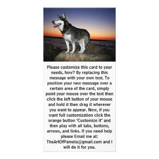 Alaskan Malamute Dog at Sunset Card