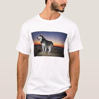 Alaskan Malamute Dog at Sunset T-Shirt
