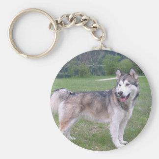 Alaskan Malamute Dog Keychain