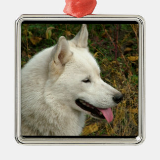 Alaskan Malamute Dog Metal Ornament