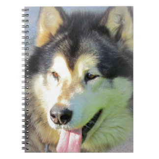 Alaskan Malamute Dog Notebook